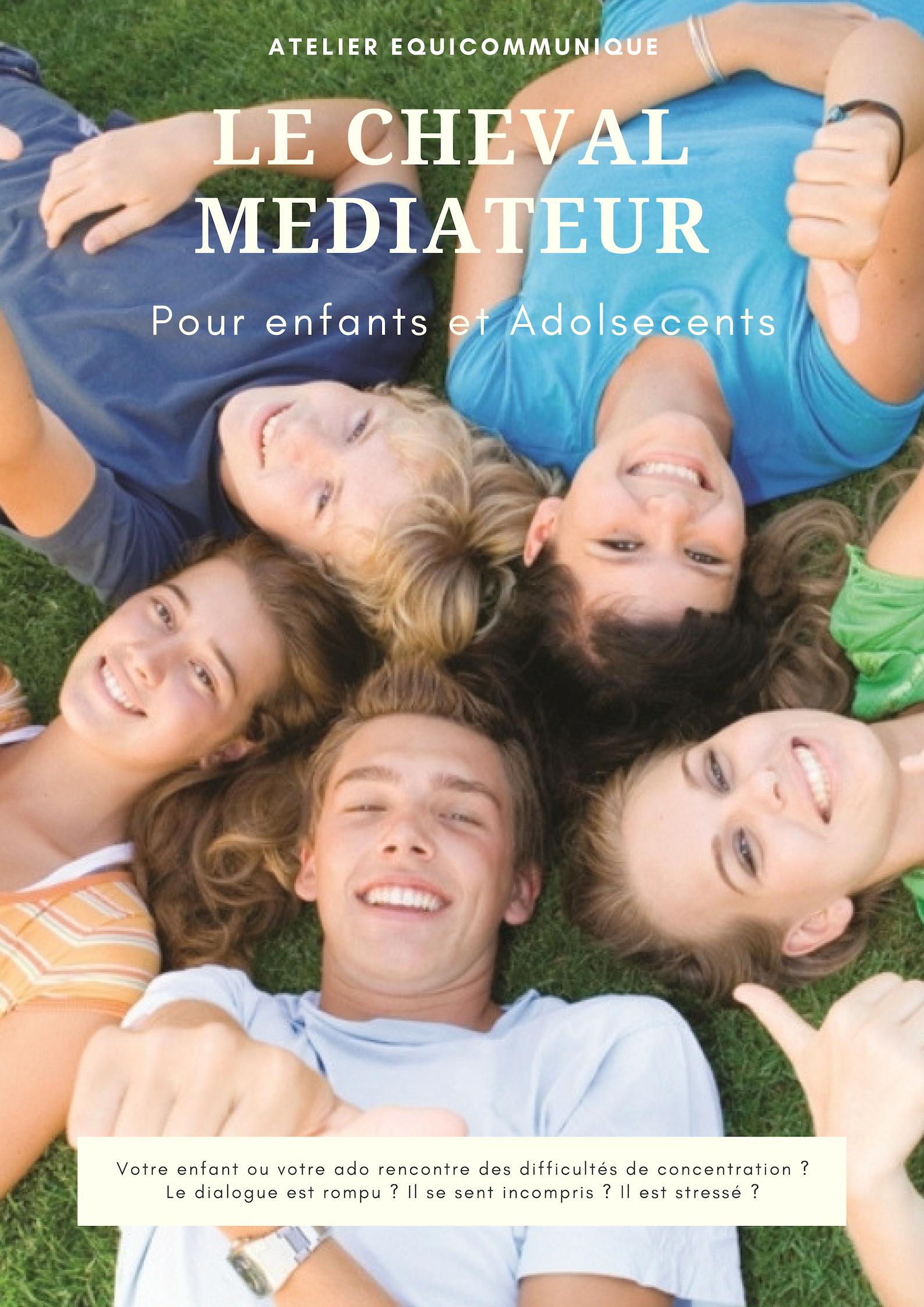 Atelier Cheval médiateur ECU Enfants et Ado